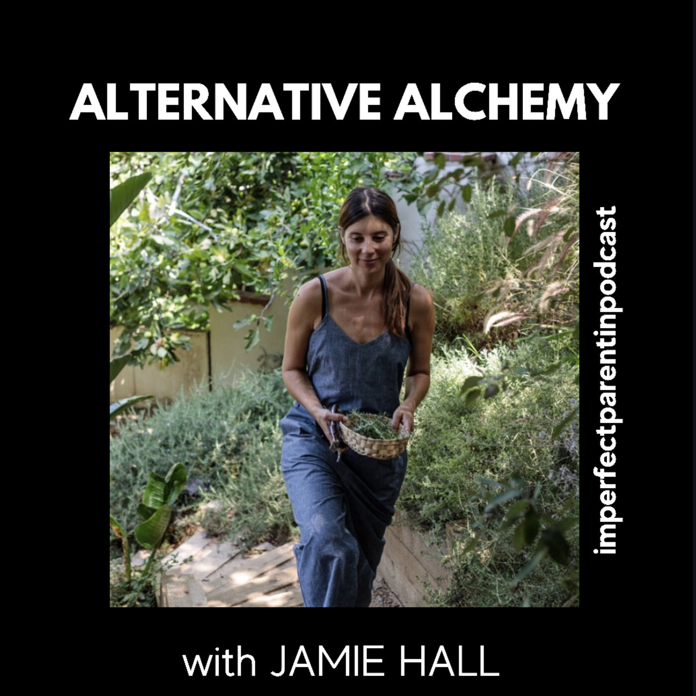 Alternative Alchemy: Recipes and Mindful Baking with CBD, Herbs, and Adaptogens with author Jamie Hall