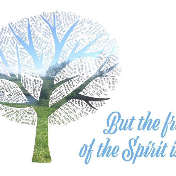 Barnabas Community Church Sunday Talks Podcast Artwork Image