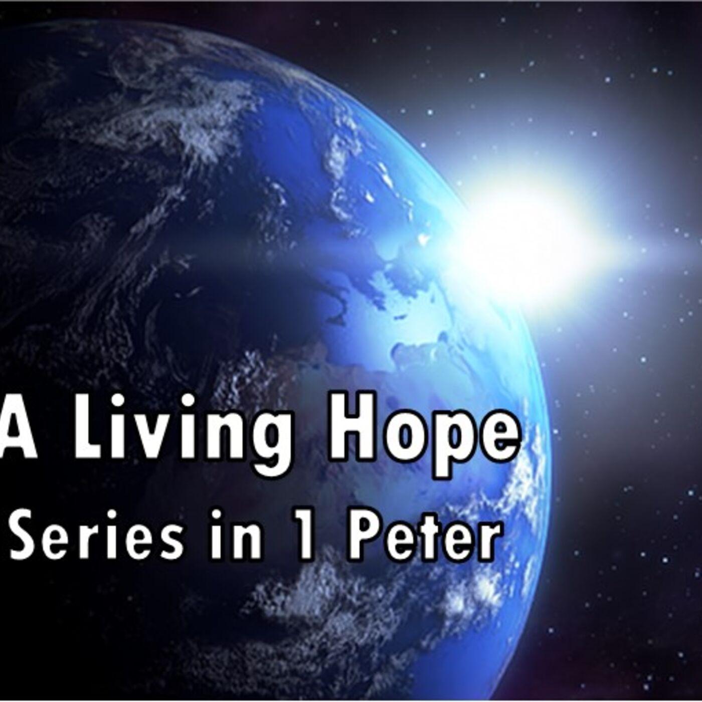 Shepherd Leadership - 1 Peter 5:1-4