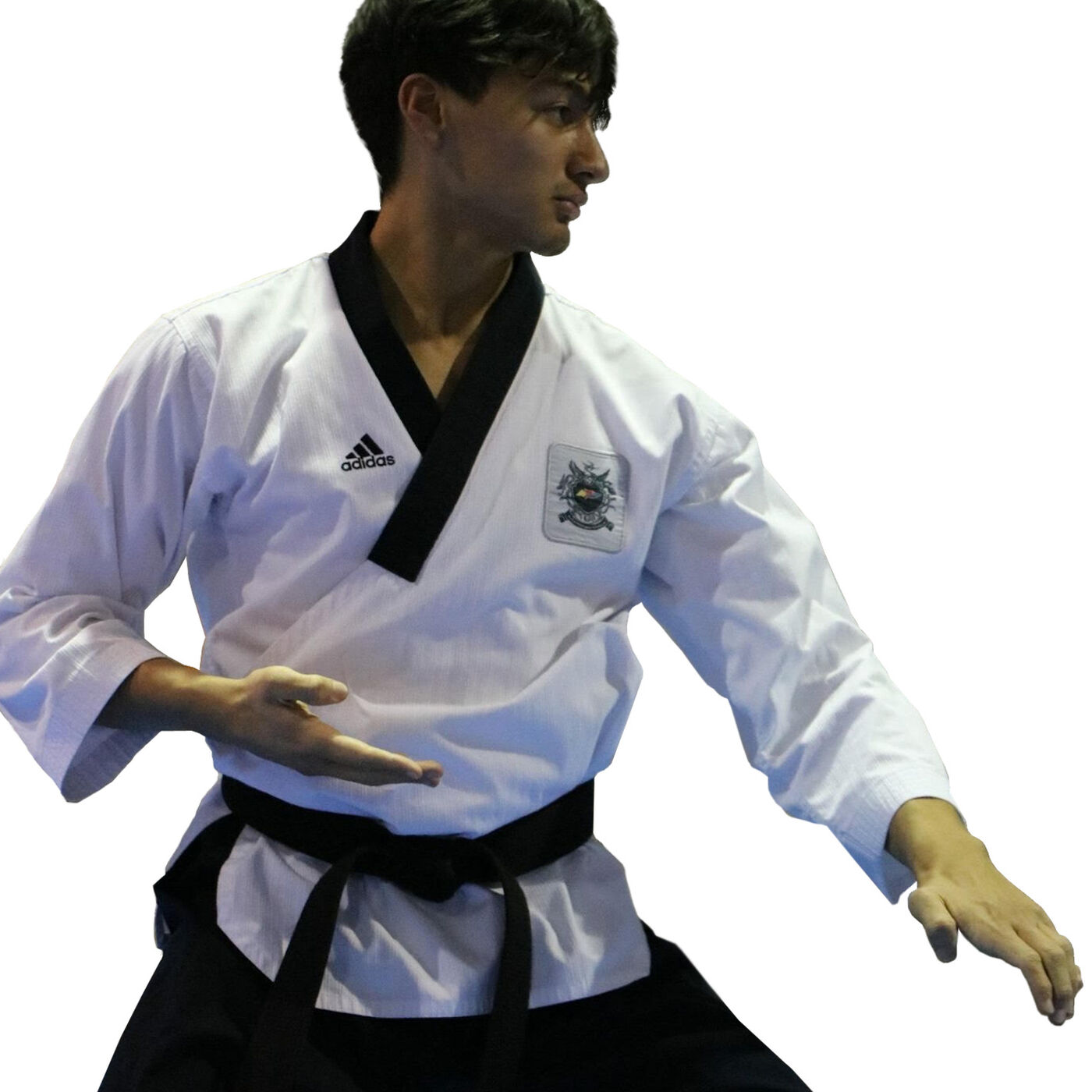 How Poomsae Saved Taekwondo
