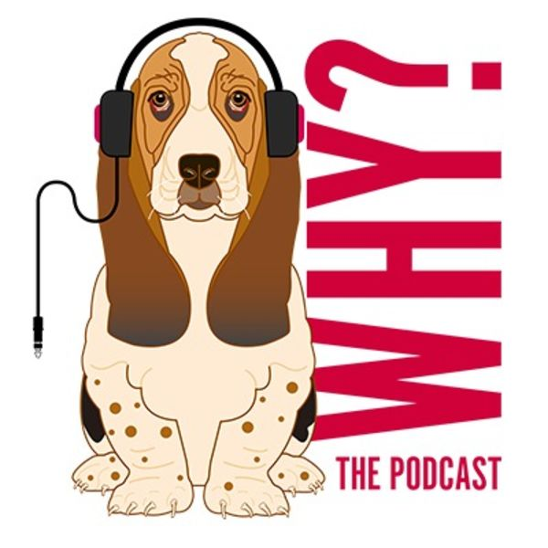 Why? The Podcast Podcast Artwork Image
