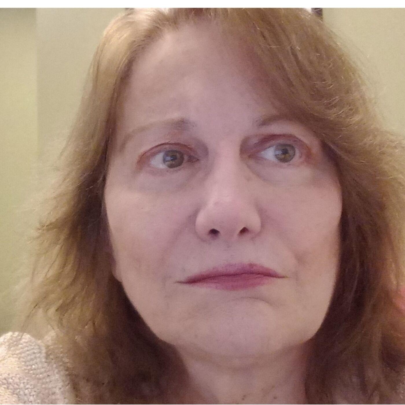 Attorney Barbara Stone Exposes The Crime Syndicates Falsely Known As Guardianships