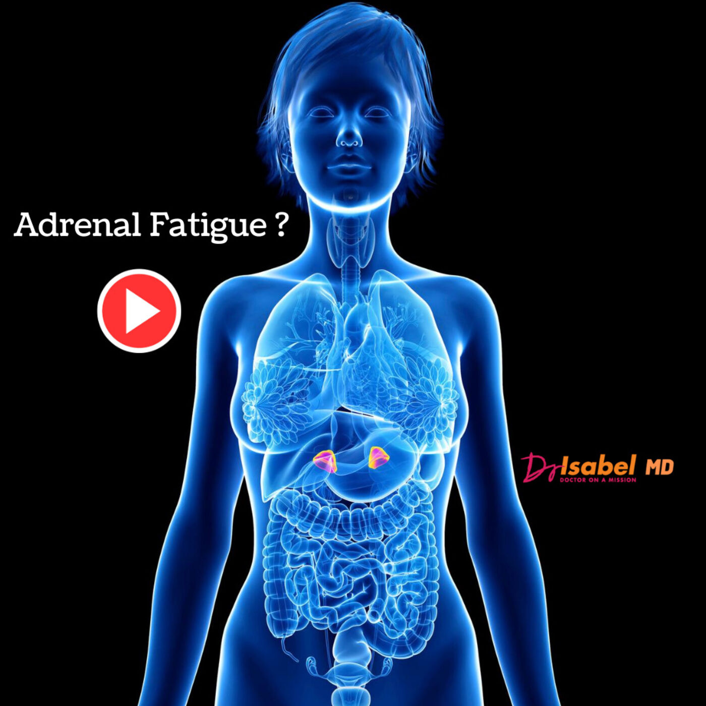 Adrenal Fatigue?