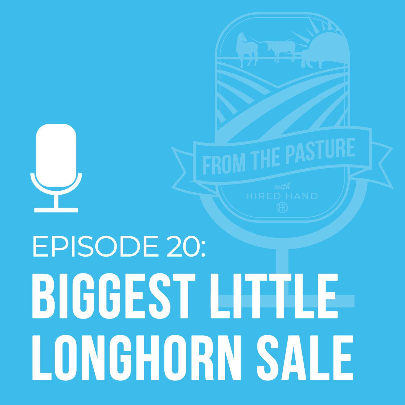 The Biggest Little Longhorn Sale