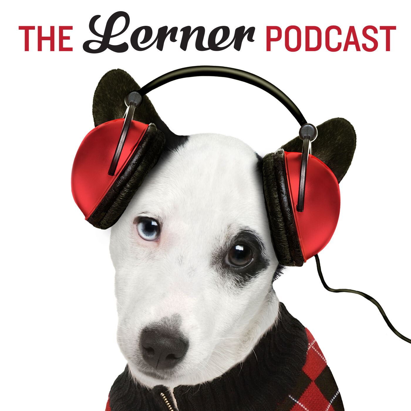 The Lerner Podcast podcast show image