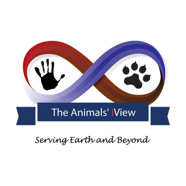 The Animals' iView Podcast Artwork Image