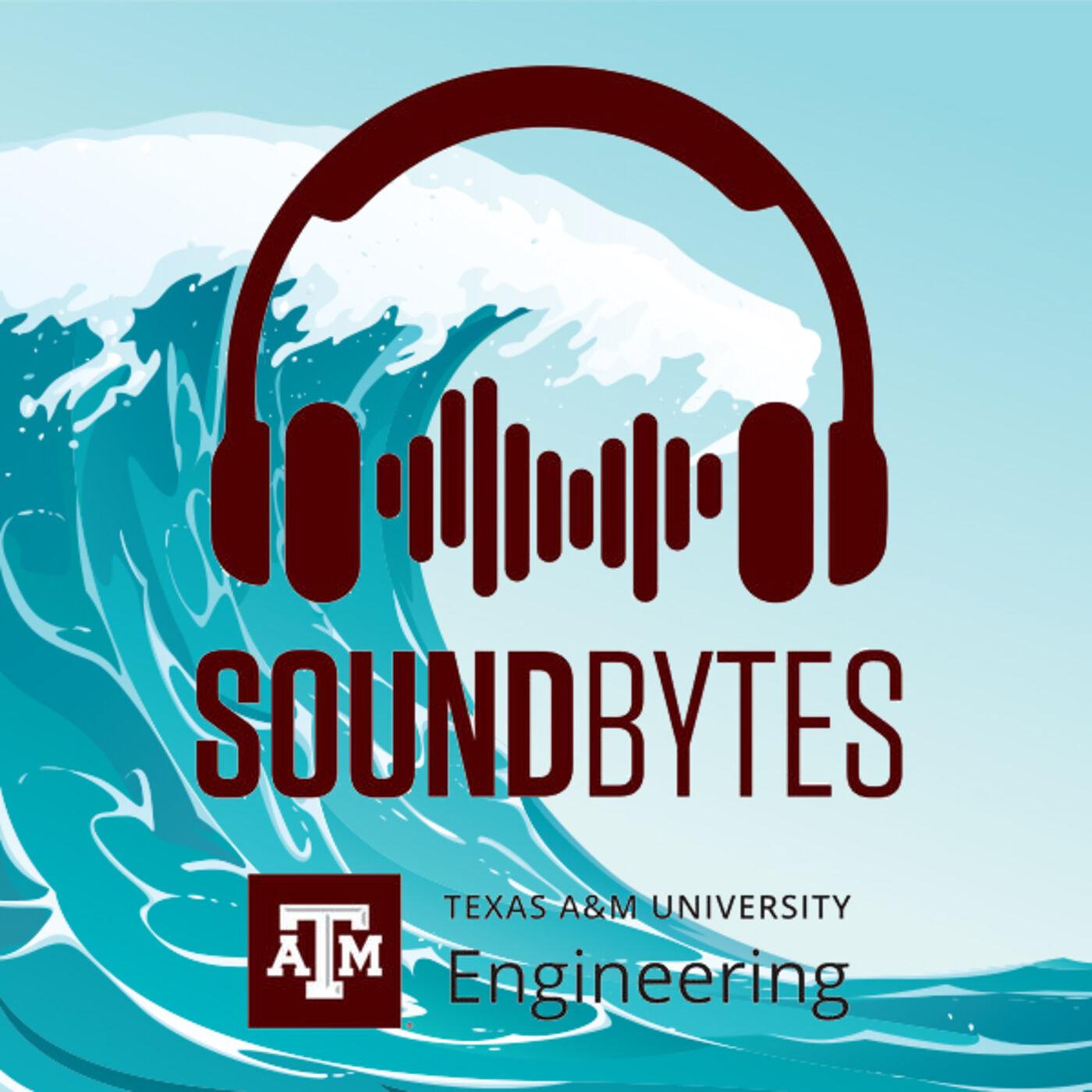 The Wire: Predicting tsunamis in the Gulf of Mexico