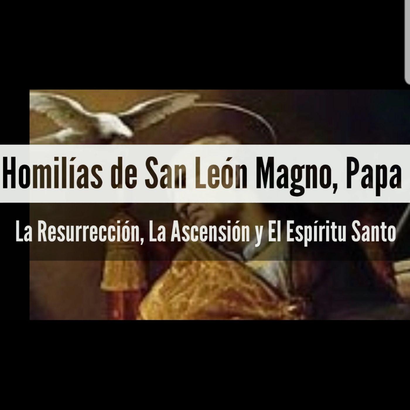 Bono: Homilías de San León Magno Papa y Doctor de la Iglesia (Ascencion y Pentecostes)