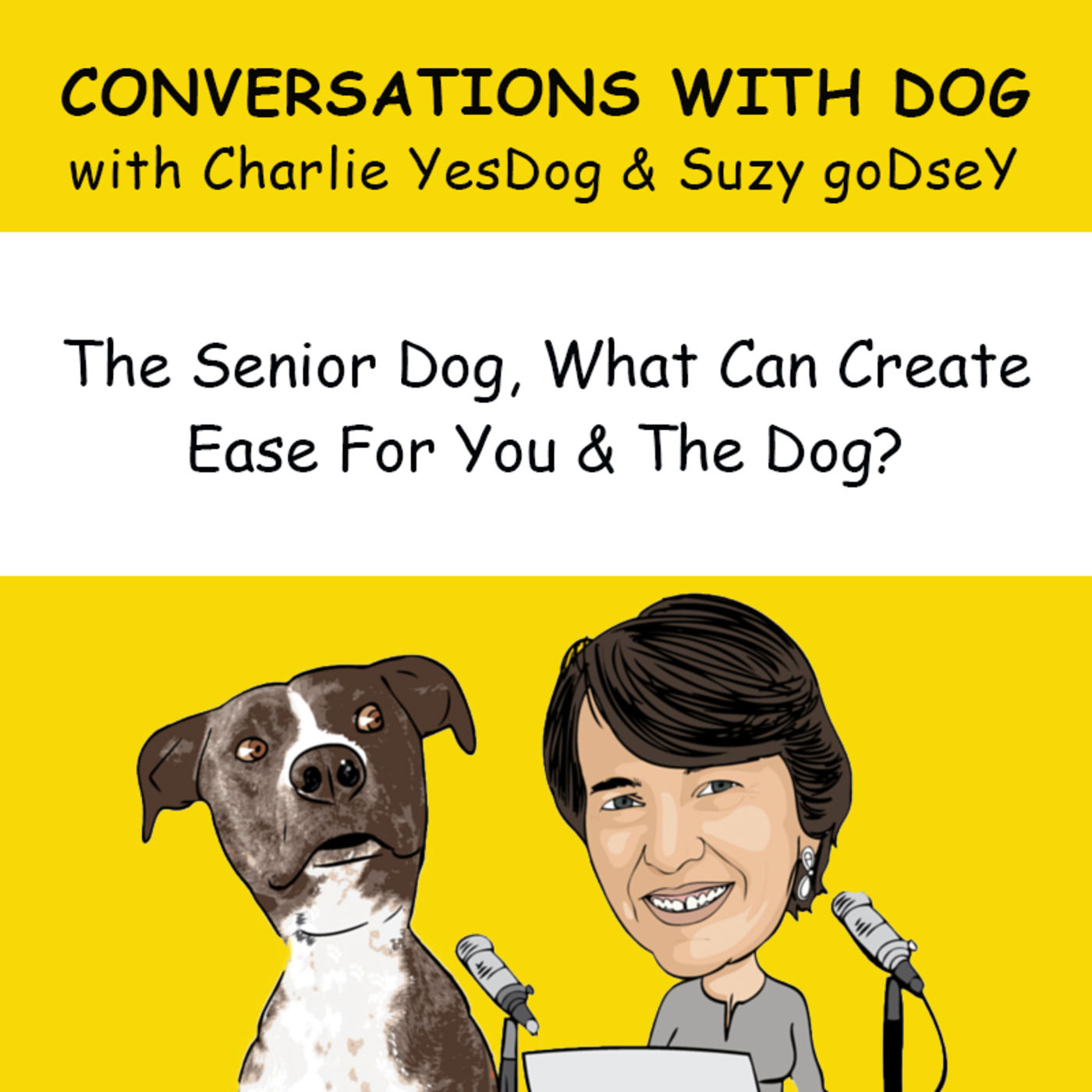 The Senior Dog, what can create ease for you and the dog?