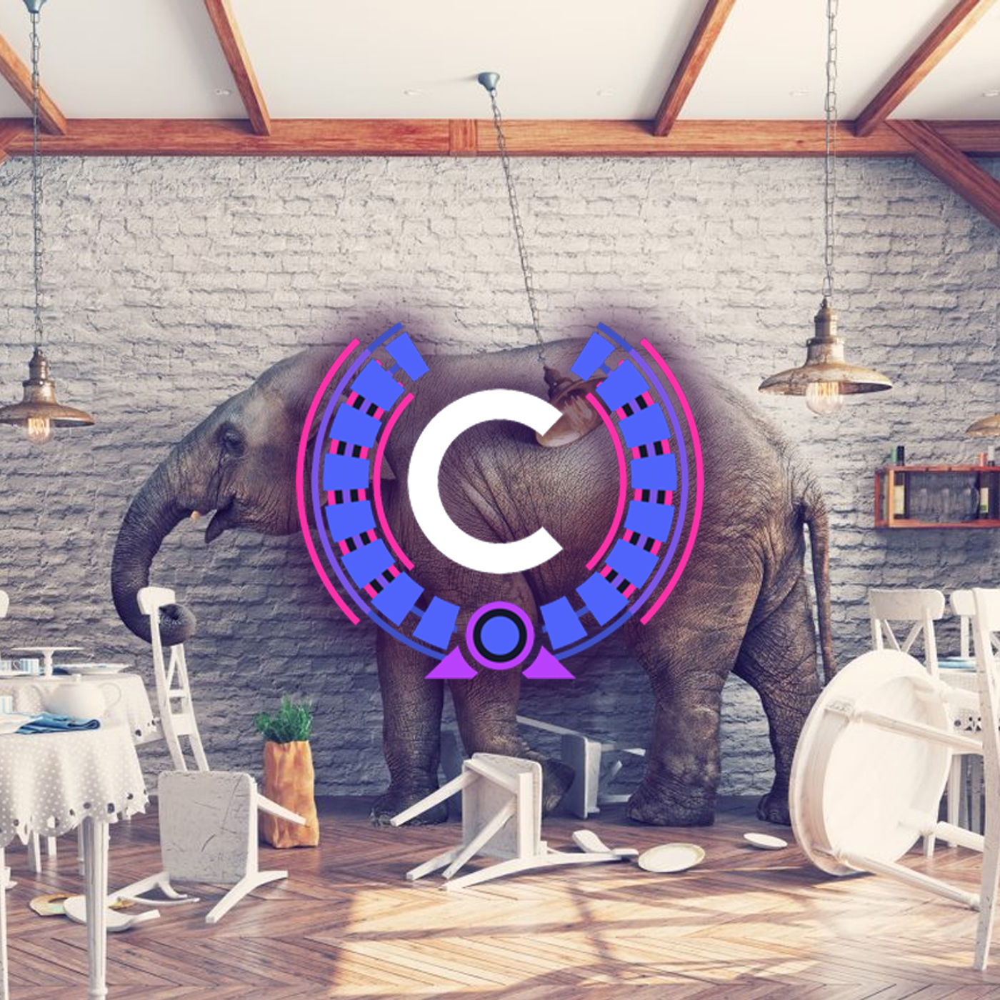 Episode 2 - The Elephant in the Room