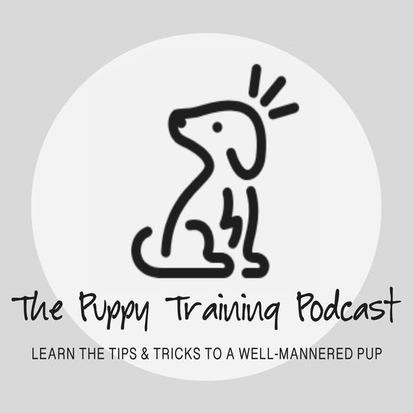 The Puppy Training Podcast Podcast Artwork Image
