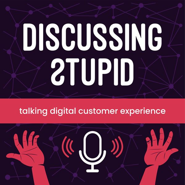 Discussing Stupid: Talking Digital Customer Experience Podcast Artwork Image