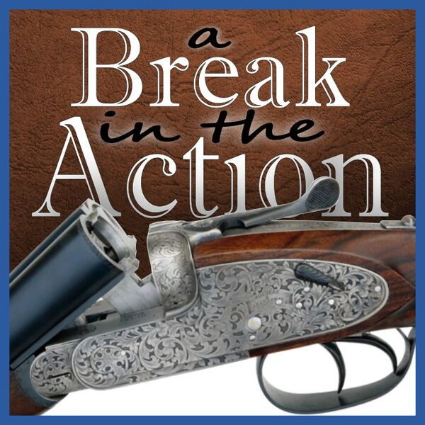 A Break in the Action Podcast Artwork Image