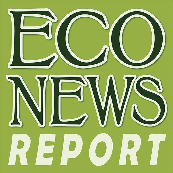 EcoNews Report Podcast Artwork Image