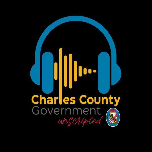 Inside Your County Government Podcast Artwork Image