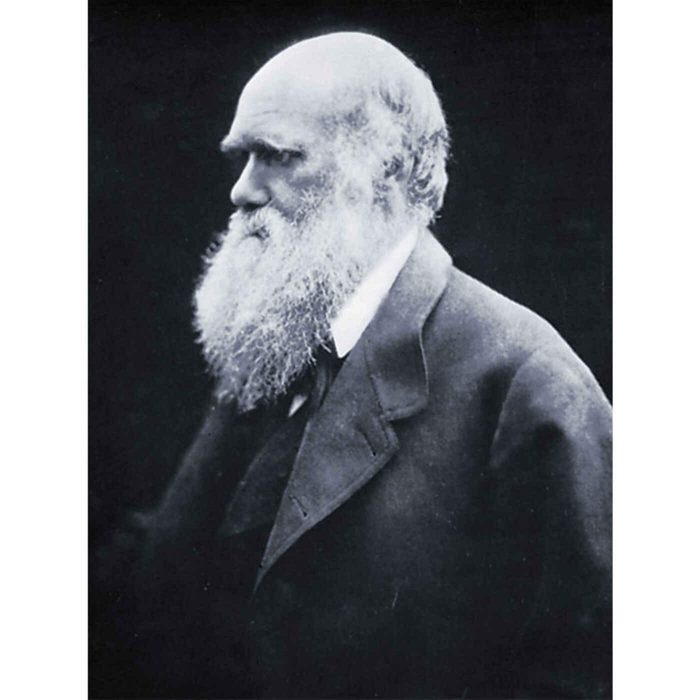 The Christian Foundations of Science and the Impact of Darwin