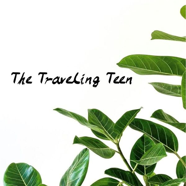 The Traveling teen  Podcast Artwork Image