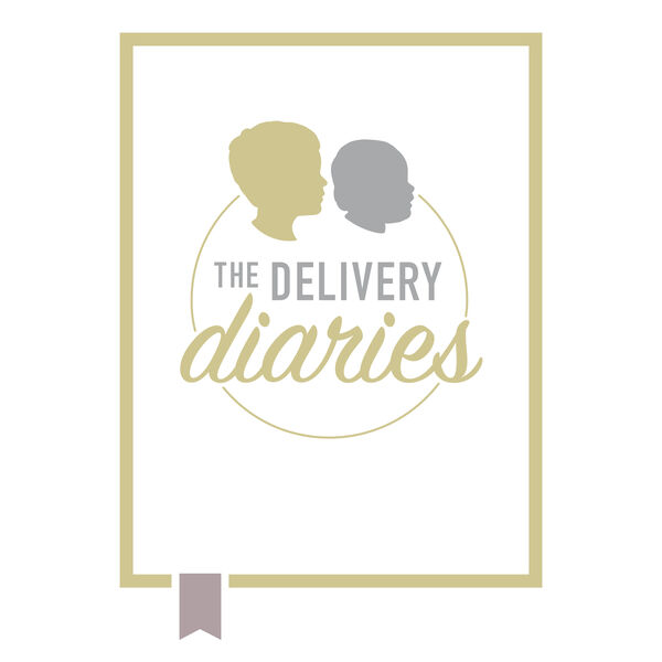 The Delivery Diaries  Podcast Artwork Image