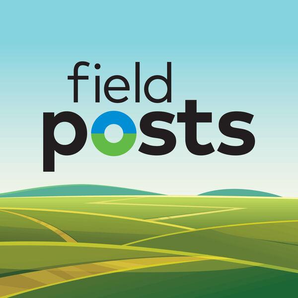 Field Posts Podcast Artwork Image
