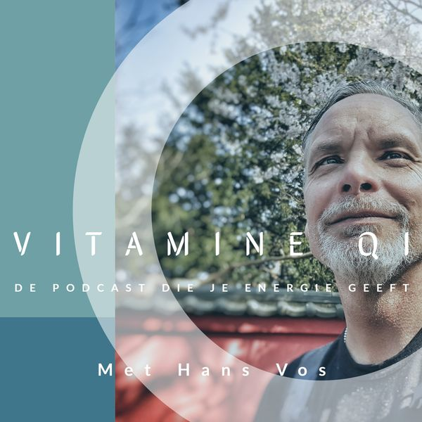 VITAMINE QI - de podcast die je energie geeft Podcast Artwork Image