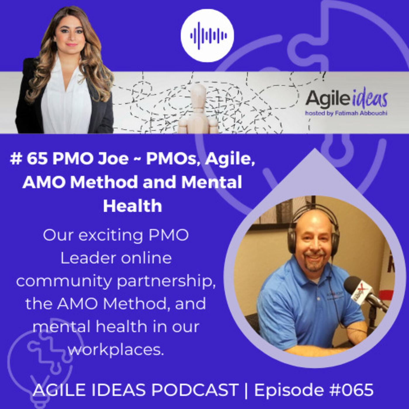 #065   PMO Joe - on PMOs, Agile, AMO Method and Mental Health