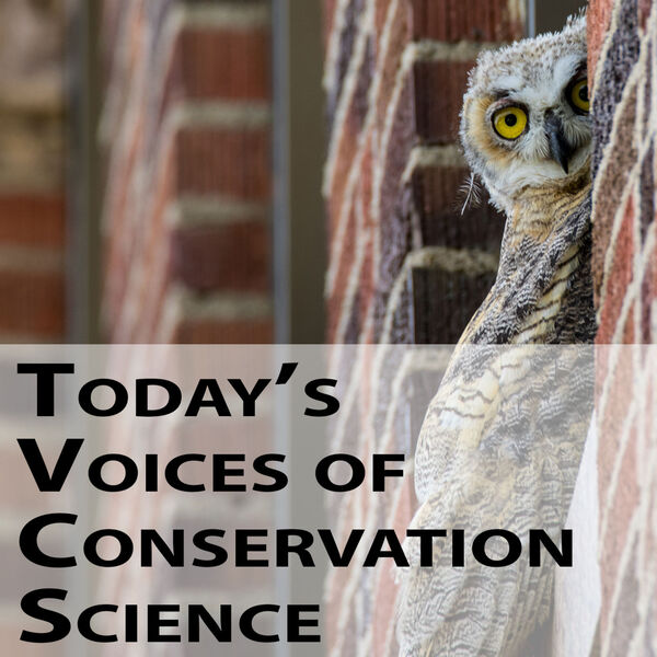 Today's Voices of Conservation Science Podcast Artwork Image