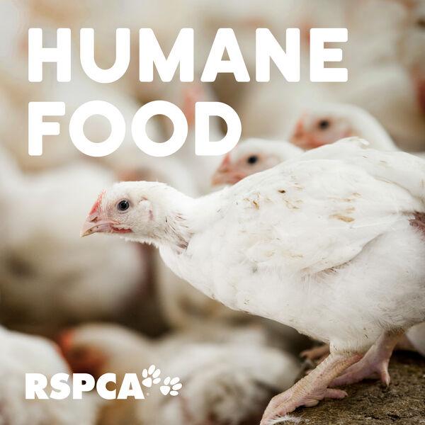 RSPCA Australia's Humane Food Podcast Podcast Artwork Image