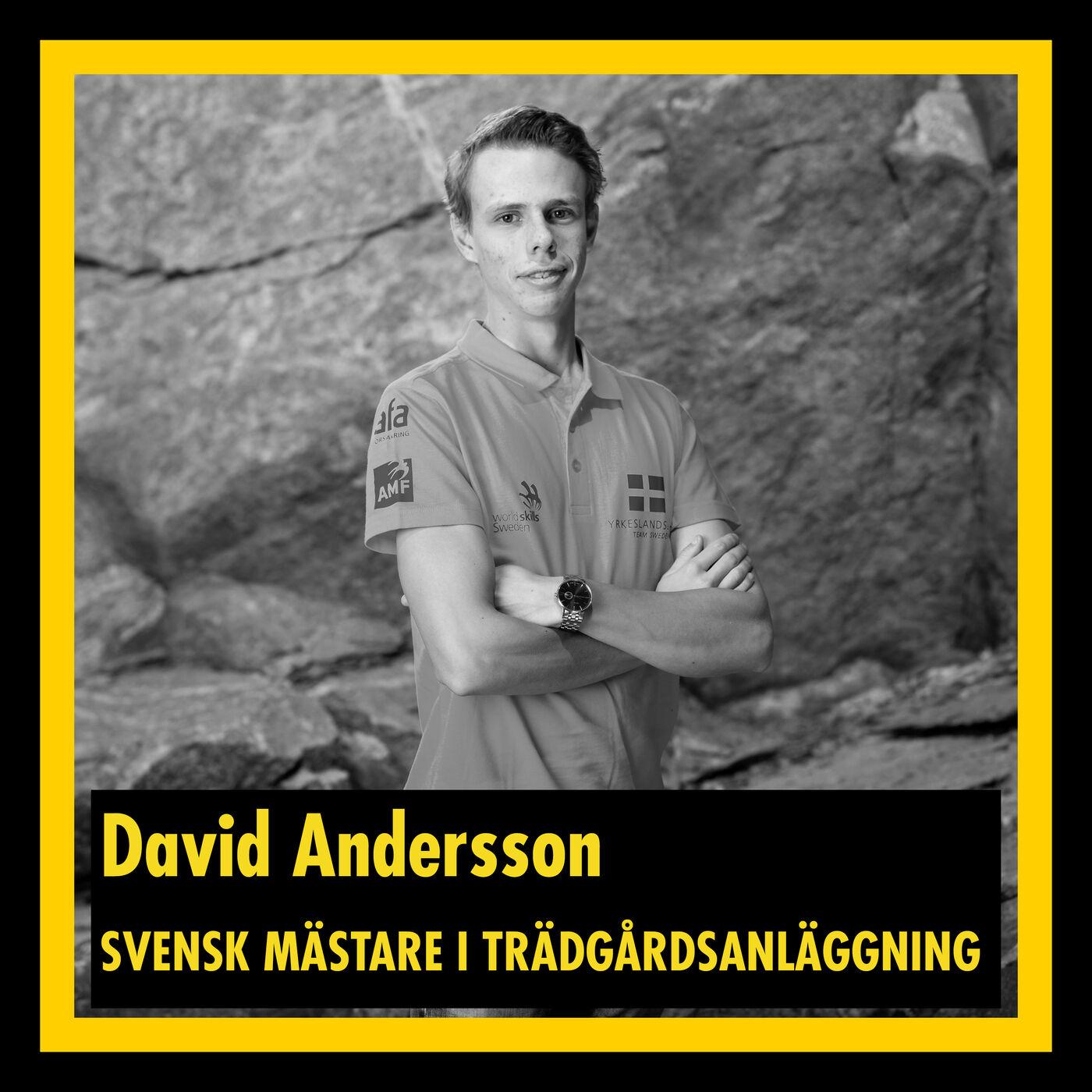David Andersson - Svensk mästare i trädgårdsanläggning