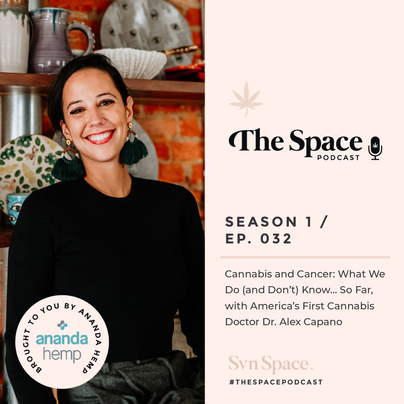 THE Space #032: Cannabis and Cancer: What We Do (and Don't) Know… So Far, with America's First Cannabis Doctor Dr. Alex Capano
