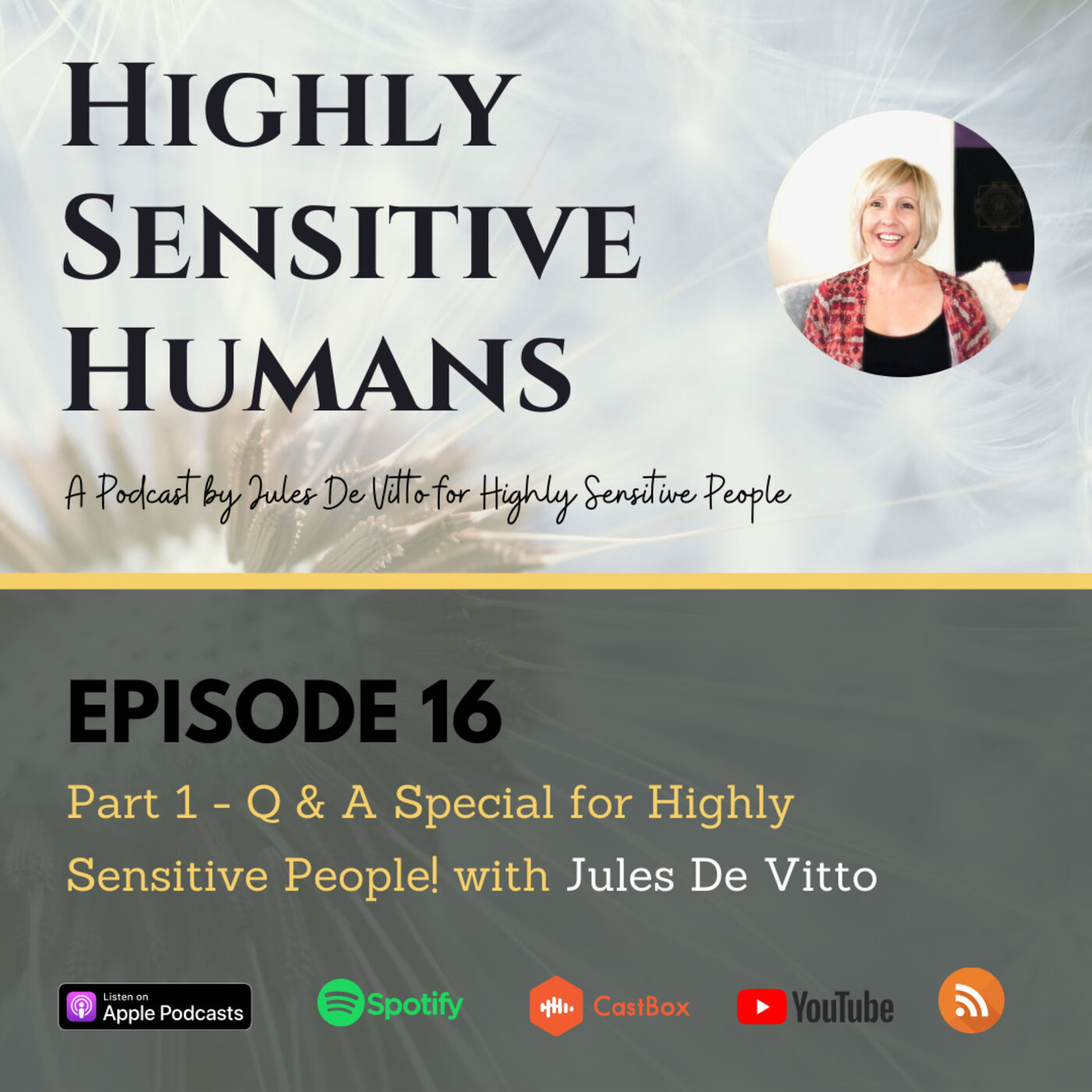 Part 1 - Q & A Special for Highly Sensitive People! with Jules De Vitto