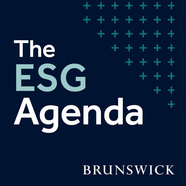 The ESG Agenda Podcast Artwork Image