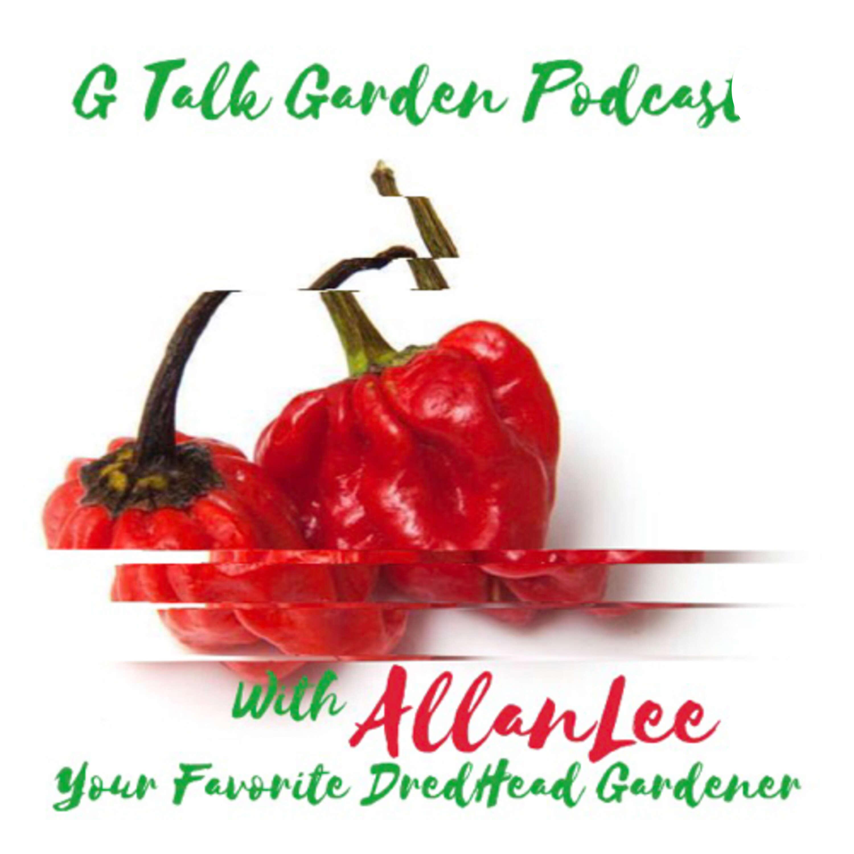 G Talk Garden Podcast