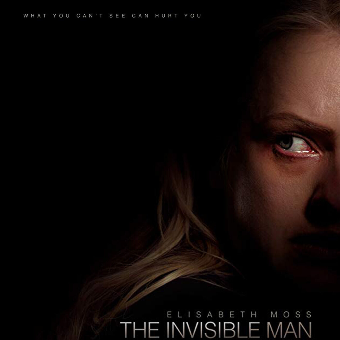 Episode 10: The Invisible Man (2020)
