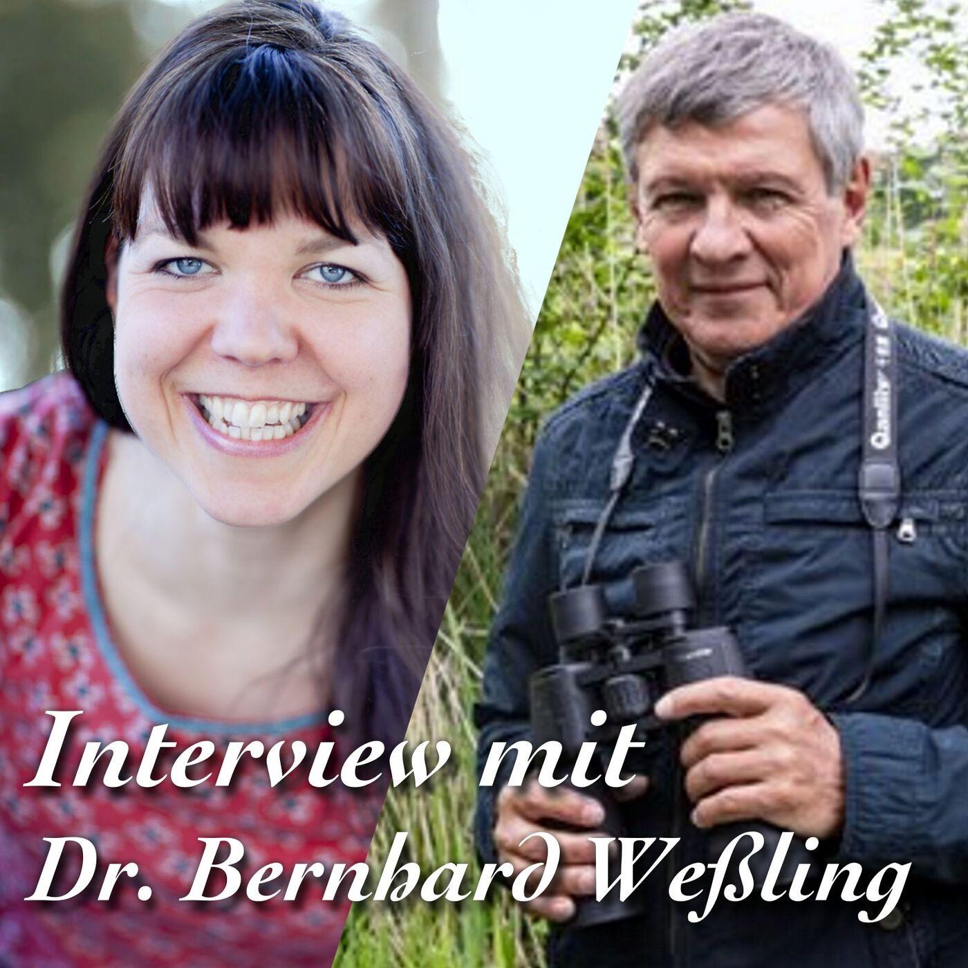 Interview mit Dr. Bernhard Wessling
