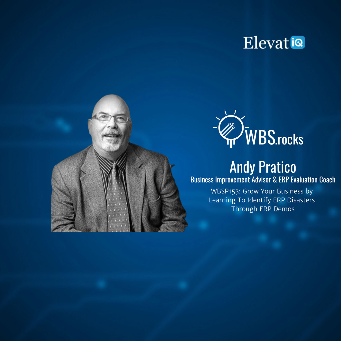WBSP153: Grow Your Business by Learning To Identify ERP Disasters Through ERP Demos w/ Andy Pratico