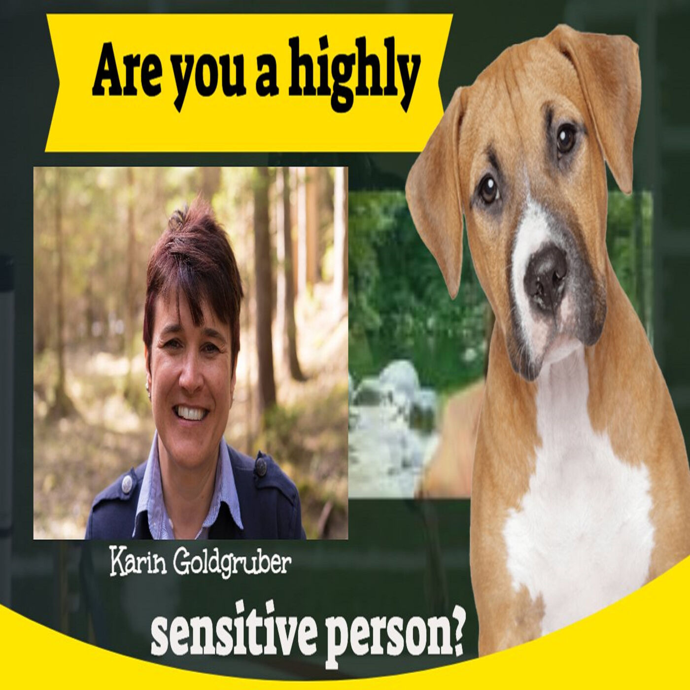 Are you a highly sensitive person? Do you feel bombarded with anxiety during #COVID19?