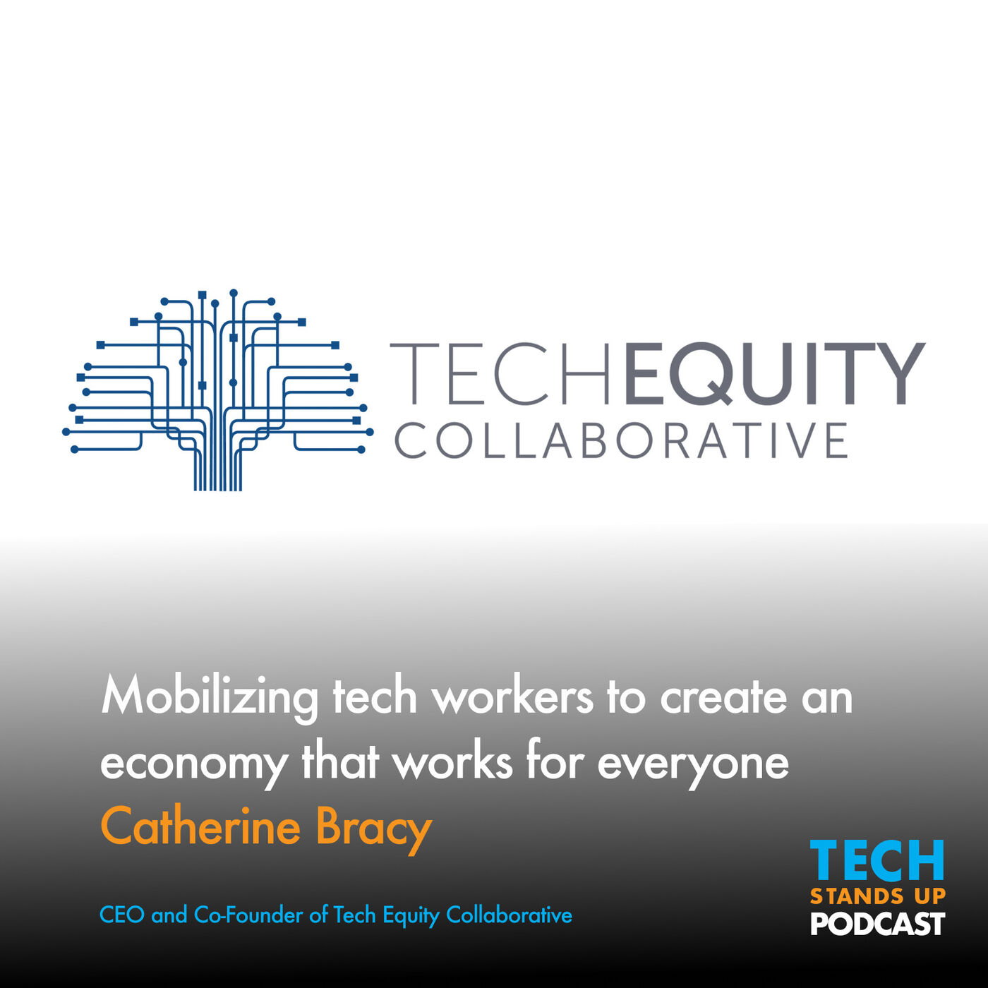 Catherine Bracy: Mobilizing tech workers to create an economy that works for everyone