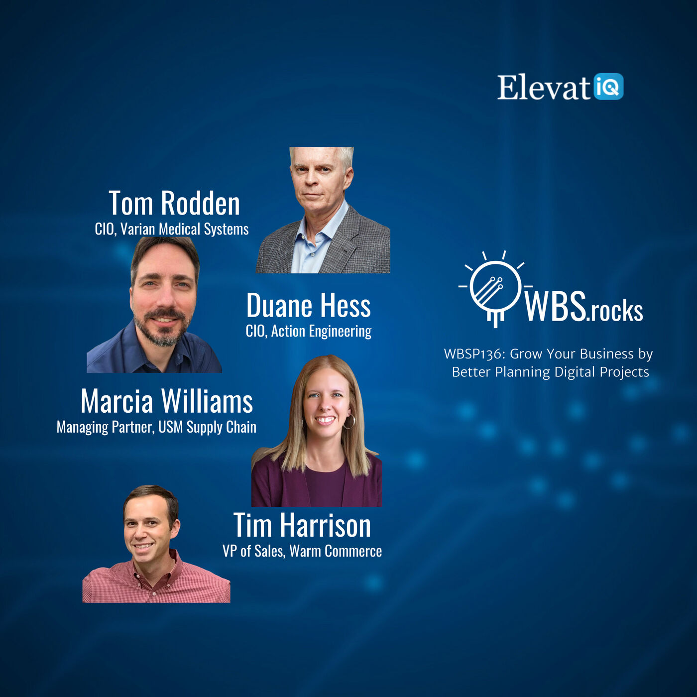 WBSP136: Grow Your Business by Better Planning Digital Projects, a Live Interview w/ a Panel of Experts