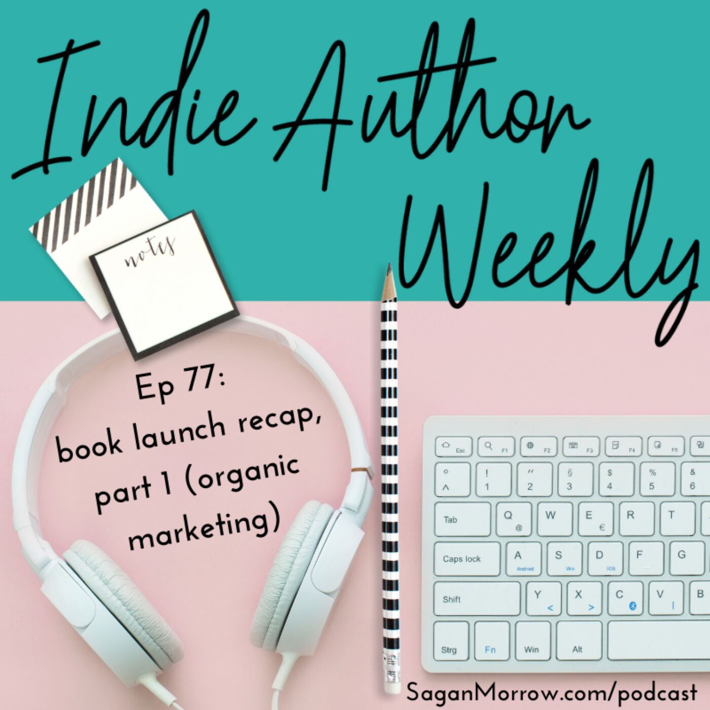 077: Book launch recap, part 1: organic marketing