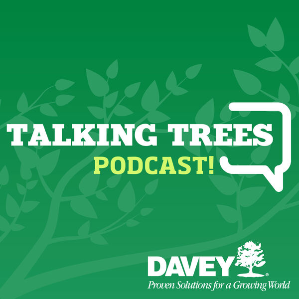 Talking Trees with Davey Tree Podcast Artwork Image