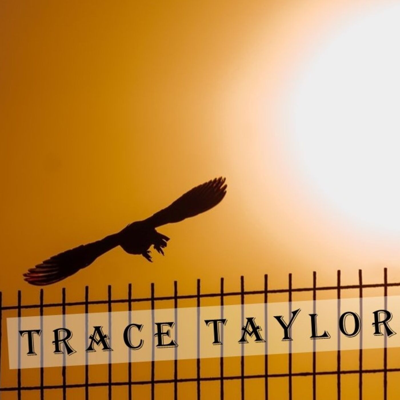 Trace Taylor fireside talks (with Norman) - 09 (gates & doors, religion pigeon, battle days) August  2020
