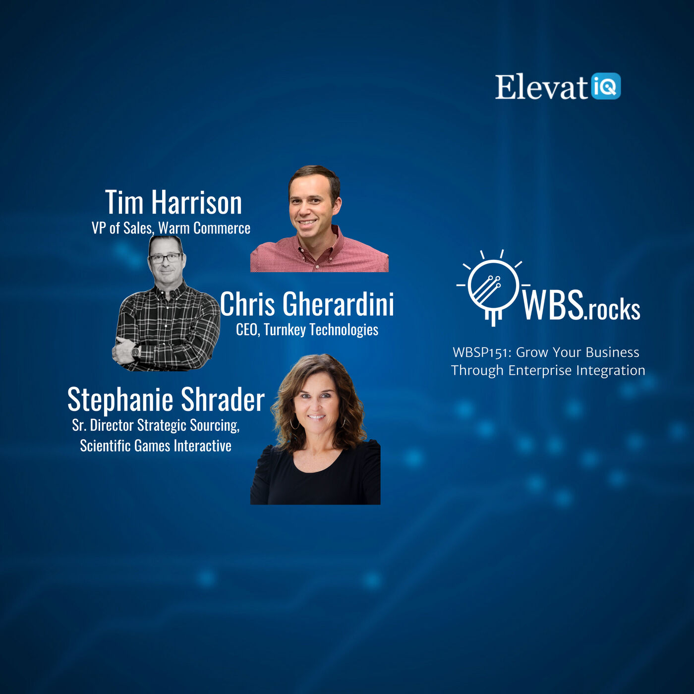 WBSP151: Grow Your Business Through Enterprise Integration, a Live Interview w/ a Panel of Experts