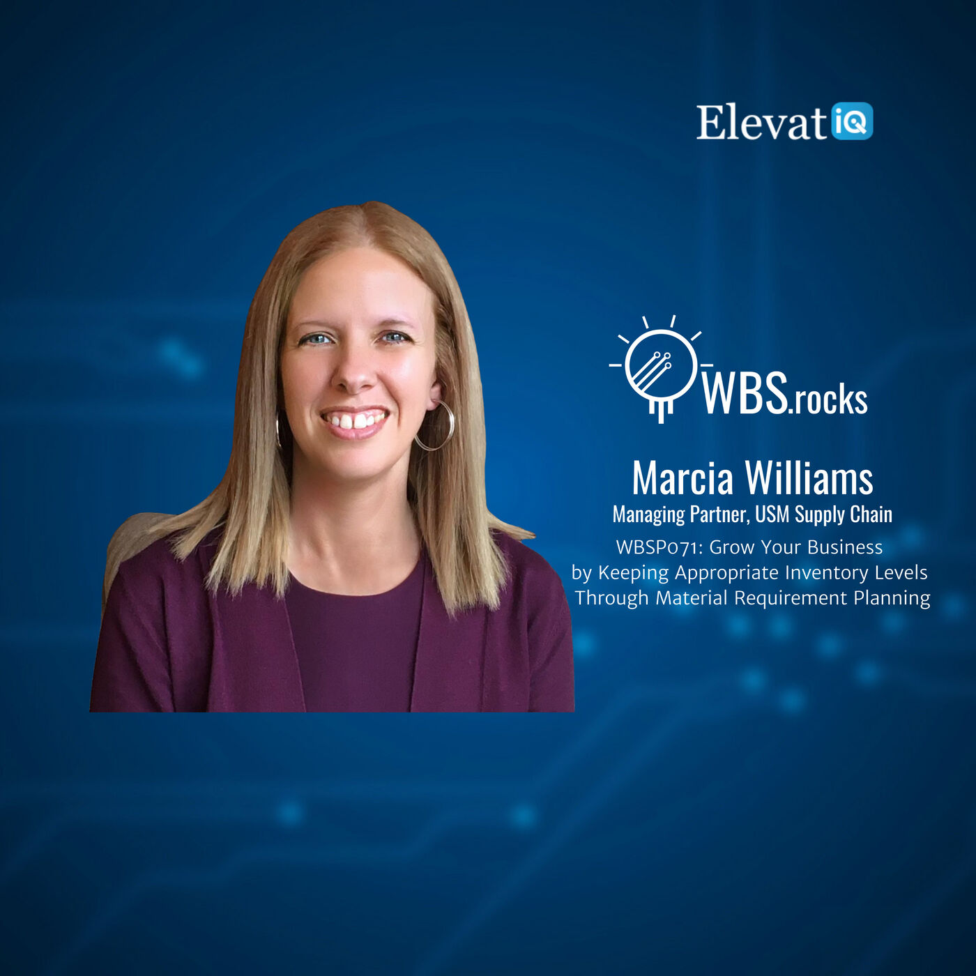 WBSP071: Grow Your Business by Keeping Appropriate Inventory Levels Through Material Requirement Planning w/ Marcia Williams