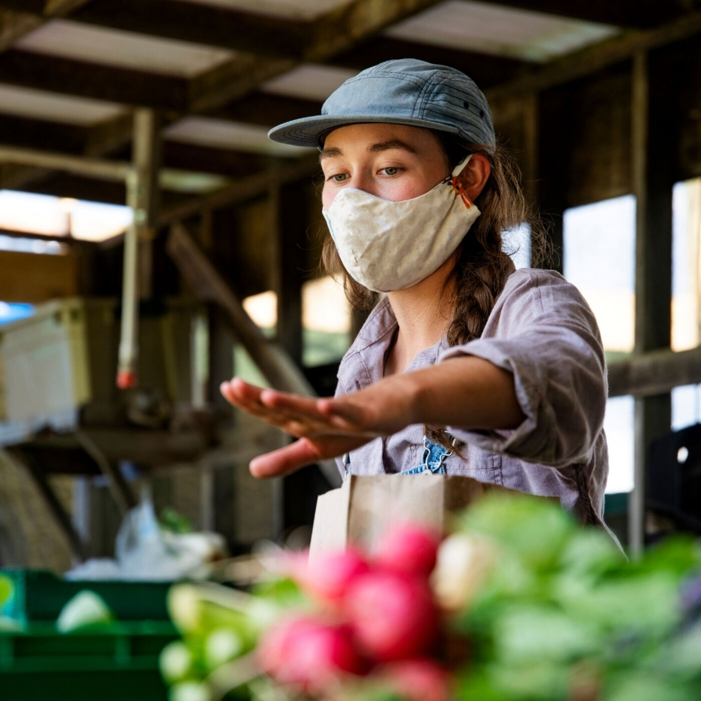 Food Safety Practices During a Pandemic – a Farmer's Story