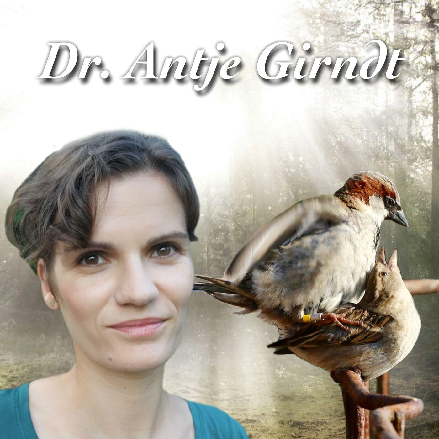 Vögel gehen fremd - Dr. Antje Girndt