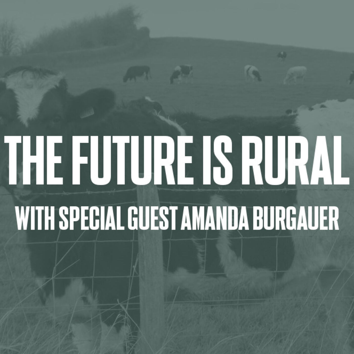 Episode #39 - The Future Is Rural