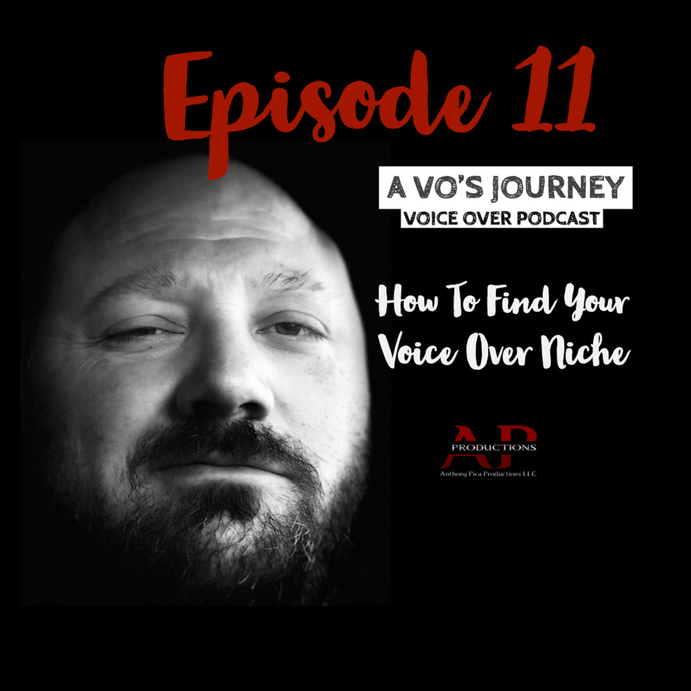 Ep. 11: How To Find Your Voice Over Niche