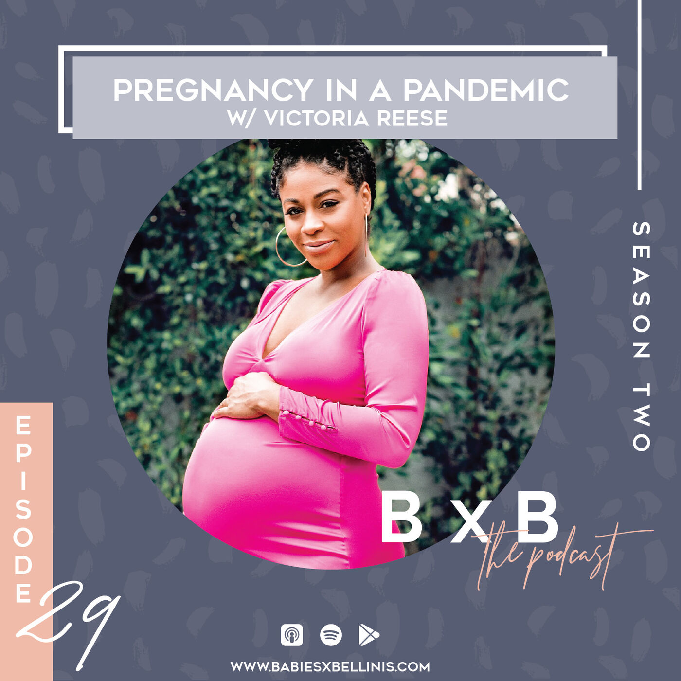 Pregnancy in a Pandemic w/ Victoria Reese