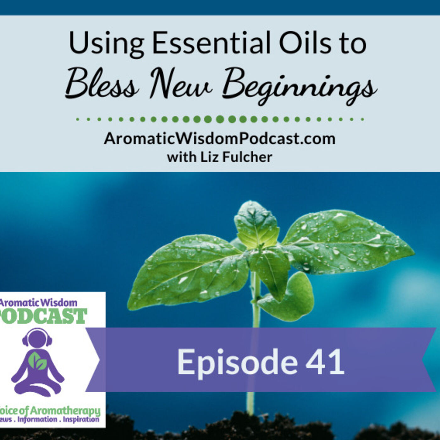 AWP 041: Using Essential Oils to Bless New Beginnings