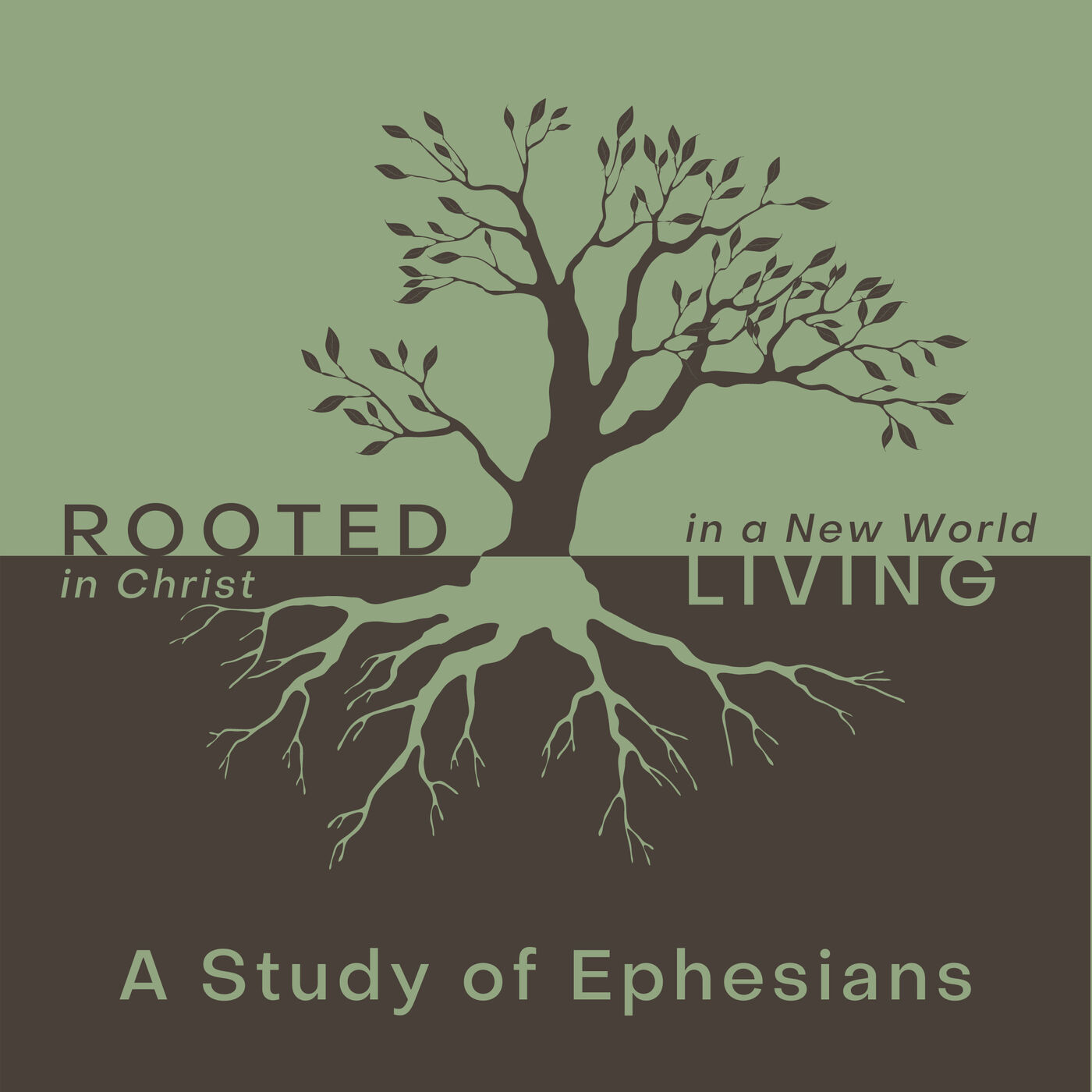 Rooted In Christ - Living in a New World - Counter Cultural Sin Eph. 2:1-3